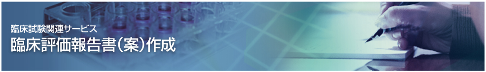 臨床評価報告書(案)の作成サポート